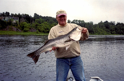 Look at this beautiful striper taken during one of our guided fishing trips